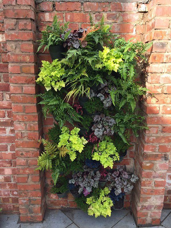 Starter Kit x 2 External Garden Wall
