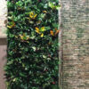 External Living Wall with Water Feature by Wonderwall