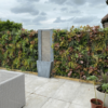 Wonderwall Living Wall with Water Feature