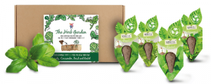 Herb Garden SeedCell Kit Box with Herb Seeds