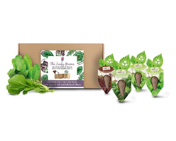SeedCell Leafy Greens Kit