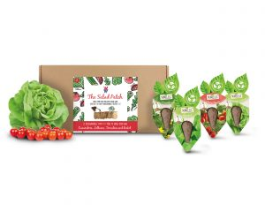 SeedCell Salad Patch Kit